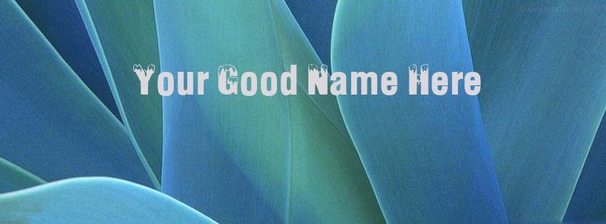 Write name on Blue Flower Leaves Name Facebook Cover Pix